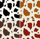 Cow Print Pattern