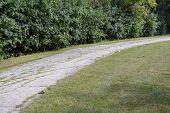 Curve Path