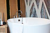 the lovely bathtub
