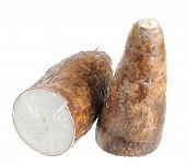 Cassava (yucca)