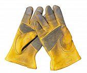 Old Gloves