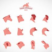 image of working animal  - Farm animals icons collection - JPG