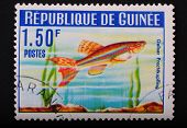 Guinea-circa1964: Postage Stamp Printed In Republic Of Guinea Shows The Image With The Inhabitants O