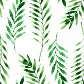 picture of fern  - vector seamless pattern with fern leaves drawing by watercolor - JPG