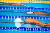 picture of swim meet  - young men start swimming race in swimming pool - JPG