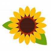 Sunflower - Flower Icon