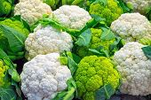 Fresh cauliflower for sale