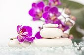 Spa stones and pink flower on white