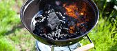 Barbecue Charcoal In Fire, Preparing For Grilling