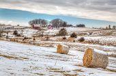 Midwest American Farm In Winter