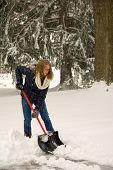 Shoveling Snow Portrait