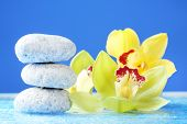 Spa stones with water drops and beautiful blooming orchid on blue background