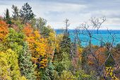 Autumn Forest And Lake Superior