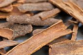 foto of cassia  - Dried cassia bark on gray table background  - JPG