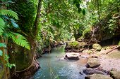 Bridge Over River In The Jungle Of Bali