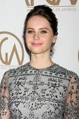 LOS ANGELES - JAN 24:  Felicity Jones at the Producers Guild of America Awards 2015 at a Century Plaza Hotel on January 24, 2015 in Century City, CA