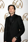 LOS ANGELES - JAN 24:  Adrien Brody at the Producers Guild of America Awards 2015 at a Century Plaza Hotel on January 24, 2015 in Century City, CA