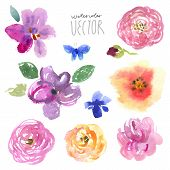 picture of acrylic painting  - Watercolor set painting floral background - JPG