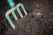 foto of turn-up  - Garden fork turning  black composted soil in compost bin ready for gardening - JPG