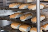 Tray of rolls on rack in the kitchen of the bakery