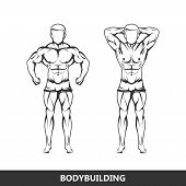 Vector illustration of muscled man body silhouettes. posing athlete. fitness or bodybuilding logo