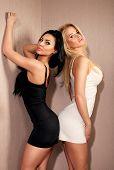 Two Sexy Women Posing.