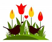 Tulips And Love Birds