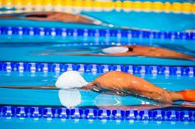 image of swim meet  - young men start swimming race in swimming pool - JPG