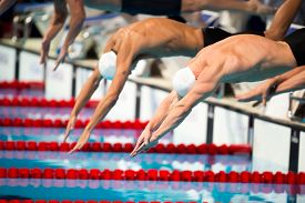picture of swim meet  - start swimming men race in swimming pool - JPG
