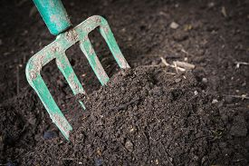 picture of decomposition  - Garden fork turning  black composted soil in compost bin ready for gardening - JPG