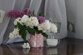 image of jug  - Lilac bouquet in a transparent jug and a cup with milk  - JPG