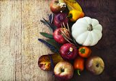 stock photo of fall-wheat  - Autumn concept background with seasonal fruits and vegetables - JPG