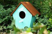 picture of nesting box  - Decorative nesting box on green background - JPG