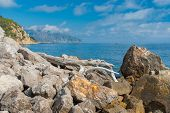 image of crimea  - Wild Black sea shore at spring season natural reserve on Cape Martyan Crimea - JPG