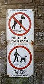 Signs, No Dogs on Beach