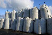 Granel sacos de mexilhões colhidos no Dockside
