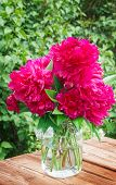 Постер, плакат: Peonies On Garden Table