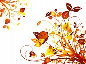 foto of floral design  - hand drawn floral design on white background - JPG