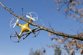 Drone quadcopter crashed on tree in city park poster