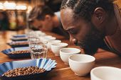 ������, ������: Coffee tasting with baristas smelling the aroma of many cups