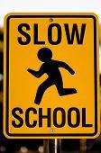 Slow School