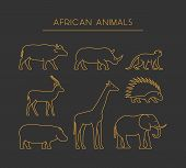 Постер, плакат: Vector Line African Animals Gold Silhouettes African Animals