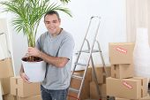 Man moving house with a plant
