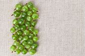 Many Gooseberry Fruits On Gray Linen Table Cloth With Copy Space, Design Ready