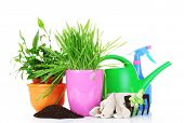 grass and garden tools isolated on white