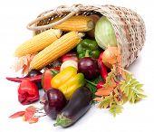 Colorful Vegetables In Basket