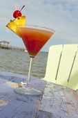 Cocktail By The Indian River Lagoon