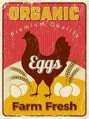 Chicken Poster. Fresh Egg Healthy Farm Food Vector Design Placard. Illustraton Chicken Egg Farm, Hea poster