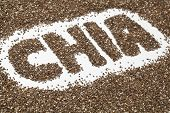 chia word made from chia seeds on white artist canvas