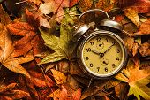 Autumn Season Time, Retro Vintage Alarm Clock In Dry Fall Leaves - Daylight Saving Time Concept poster